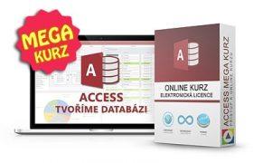 Online kurz Access